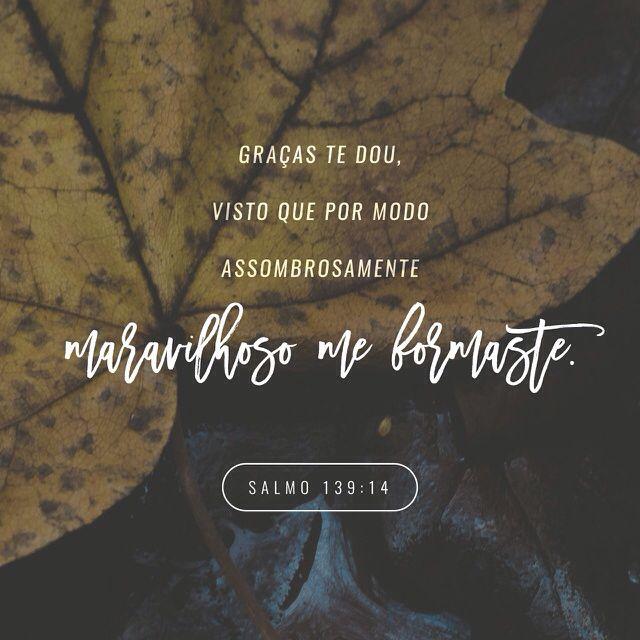 Salmos 139:14