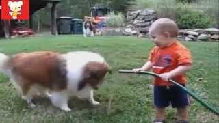 Смотреть онлайн видео Приколы с детьми и животными