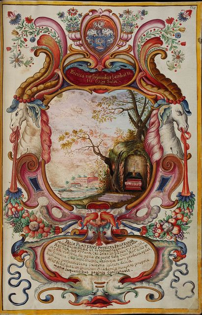 Basel, Universitätsbibliothek, AN II 4, p. 228r – Matriculation Register of the Rectorate of the University of Basel, Volume 2 (1586-1653) b...