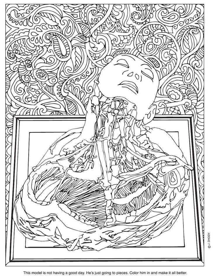 Mutter Museum coloring book! $22.95 Give life to the Mütter collection with this custom drawn coloring book! Artist Joanne Dhody has interpreted specimens and themes from the Mütter collection ...