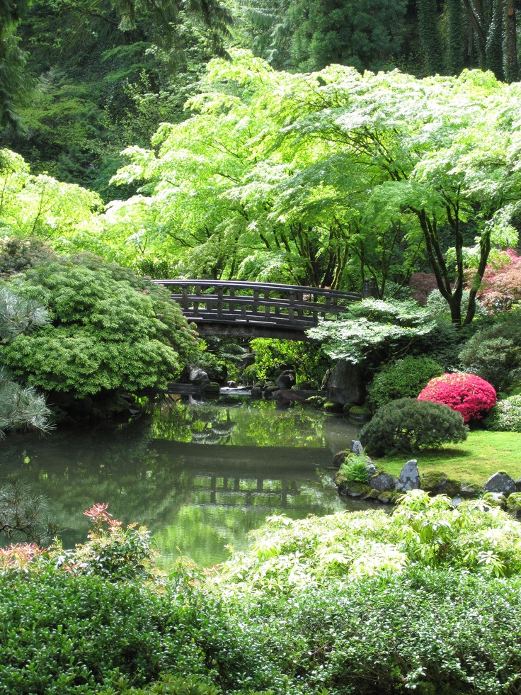 Portland Japanese Garden Store: 17 Best Images About Things To Do In Portland, Oregon On