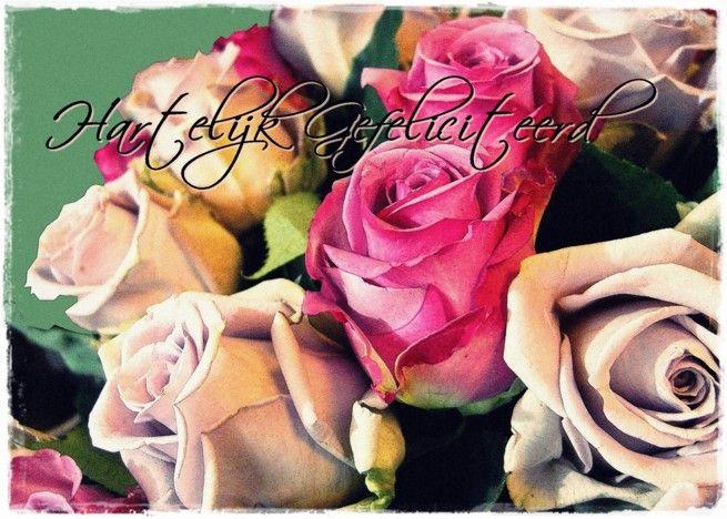 Hartelijk gefeliciteerd met je verjaardag cream and pink roses card