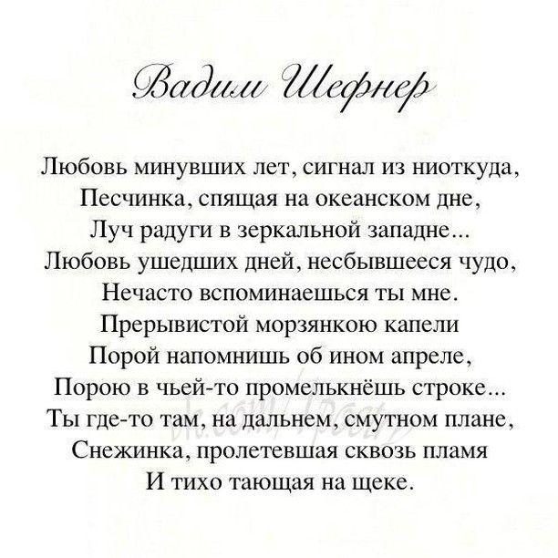 #литература #стихотворение #поэзия #стихи #шефнер