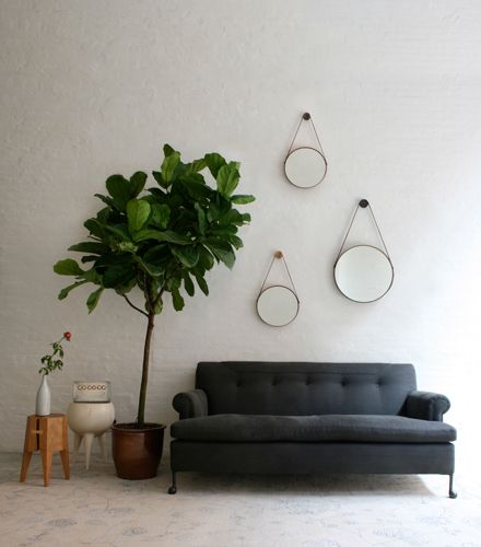 American made craftsmanship at its best. Love so many things abou this photo. The mirrors are incredible, the color of the sofa is lovely and a fig tree in a great planter is s perfect splash of green life.