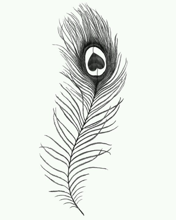 1000 Ideas About Peacock Feather Tattoo On Pinterest