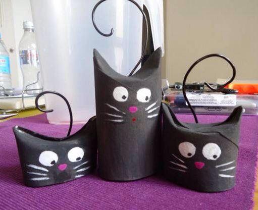 Chats rouleaux carton