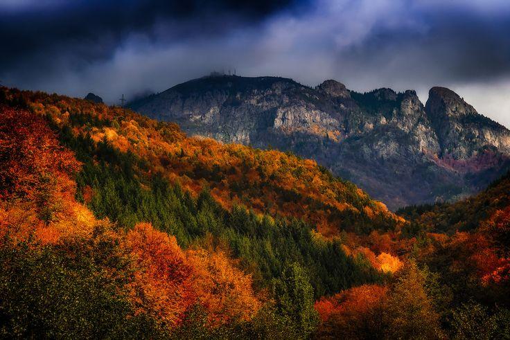 Autumn in Cozia mountain