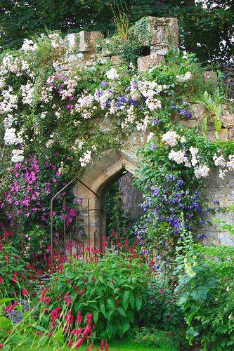 Sudeley Castle Garden.                                                                                                                                                                                 More