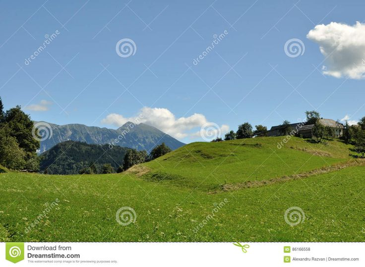 Green Land - Download From Over 56 Million High Quality Stock Photos, Images, Vectors. Sign up for FREE today. Image: 86166558