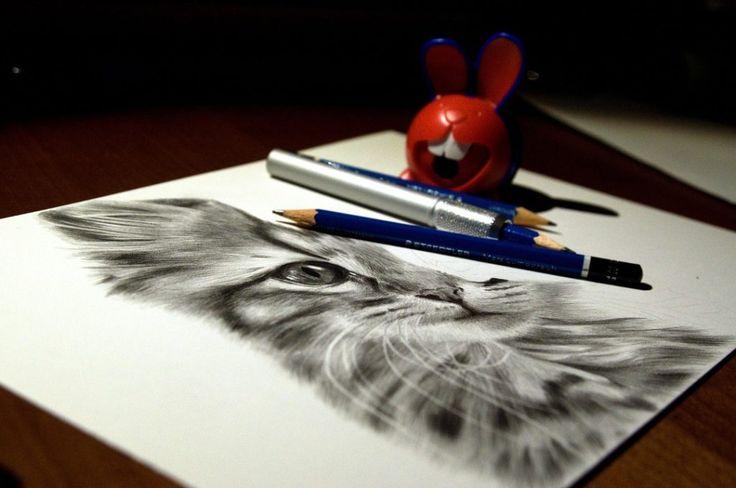 Rysunek kota ołówek workinprogress