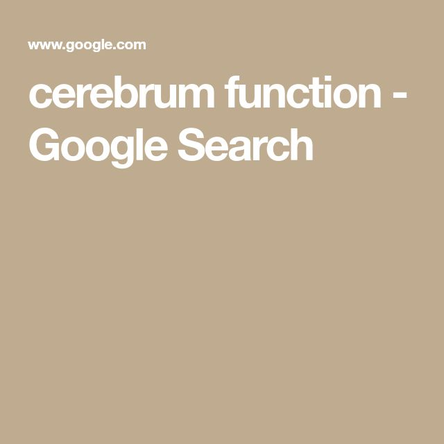 cerebrum function - Google Search