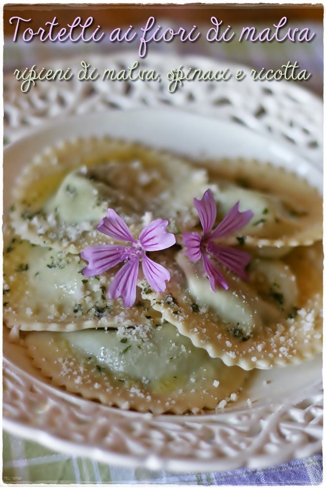 Tortelli with mallow petals stuffed with mallow greens spinach and ricotta - tortelli ai fiori di malva ripieni di malva spinaci e ricotta