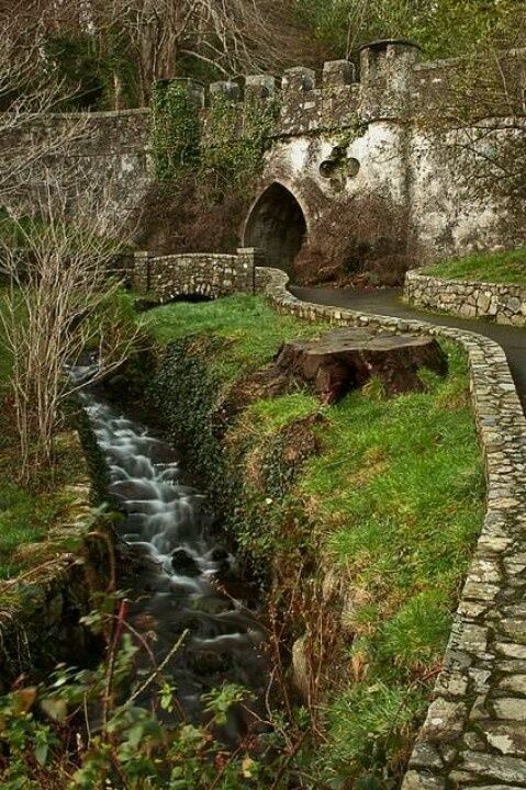 county down ireland | Tolleymore Forest Park, Northern Ireland