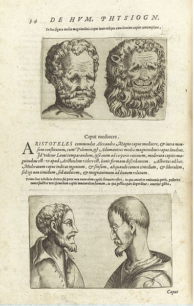 Giambattista della Porta's De humana physiognomonia libri IIII (1586) | The Public Domain Review