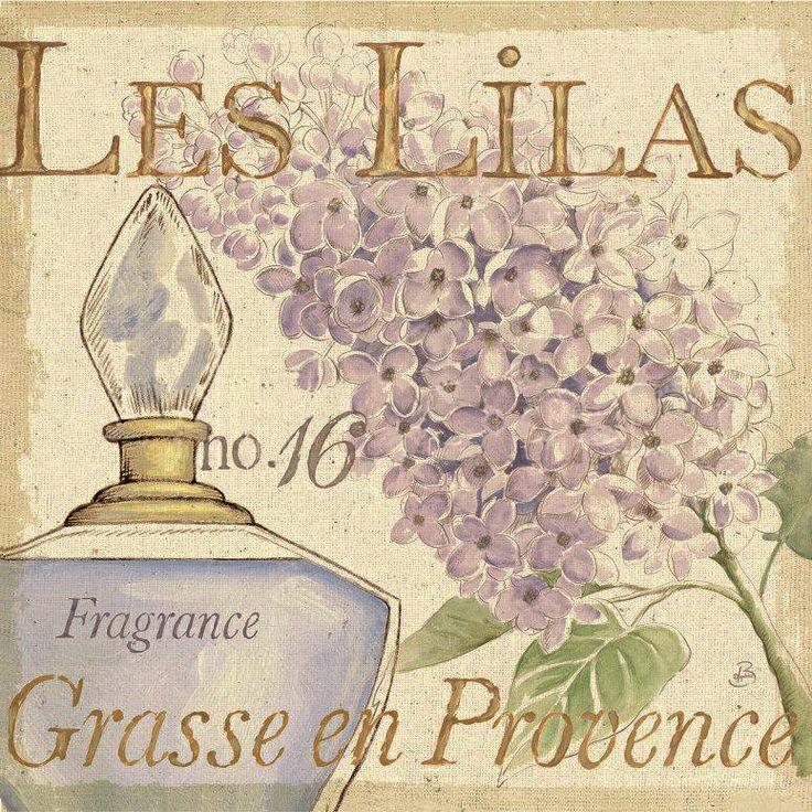Láminas perfume                                                                                                                                                                                 Más