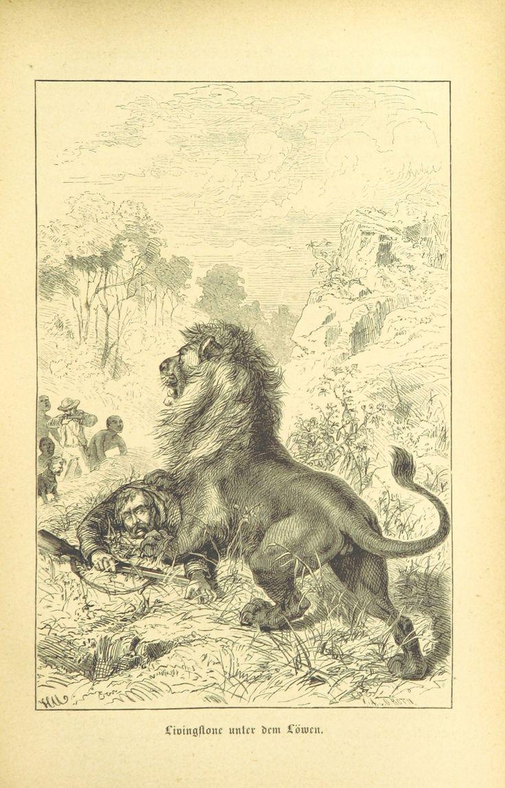 Image taken from page 295 of 'Der Schwarze Erdtheil und seine Erforscher. Reisen und Entdeckungen, Jagden und Abenteuer, Land und Volk in Afrika, etc'