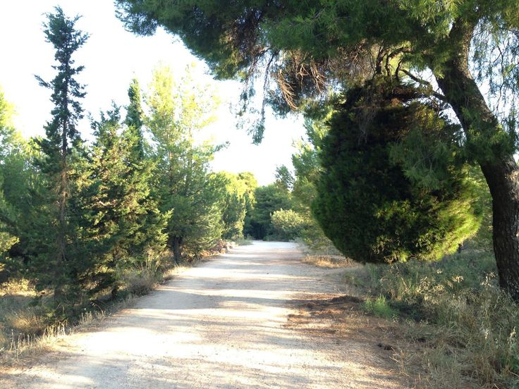 kifisia, is near to #CivitelHotels and has many beautiful parks for long walks! #Athens #AthensHotels