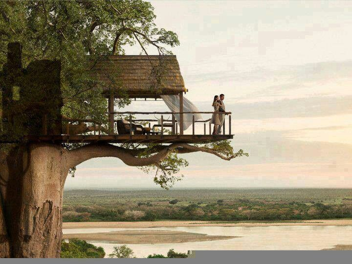 A tree house in Africa... Oh My God, how romantic!