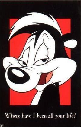 Pepe Le Pew - the sexy skunk - I used to feel so sorry for the cats he thought…