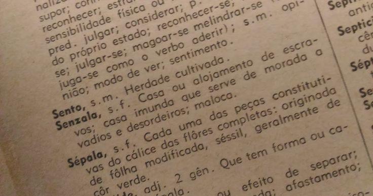 """Segundo uma edição do dicionário Aurélio que possuo, muito antiga por sinal, Senzala é um substantivo feminino que significa """"casa ou a..."""