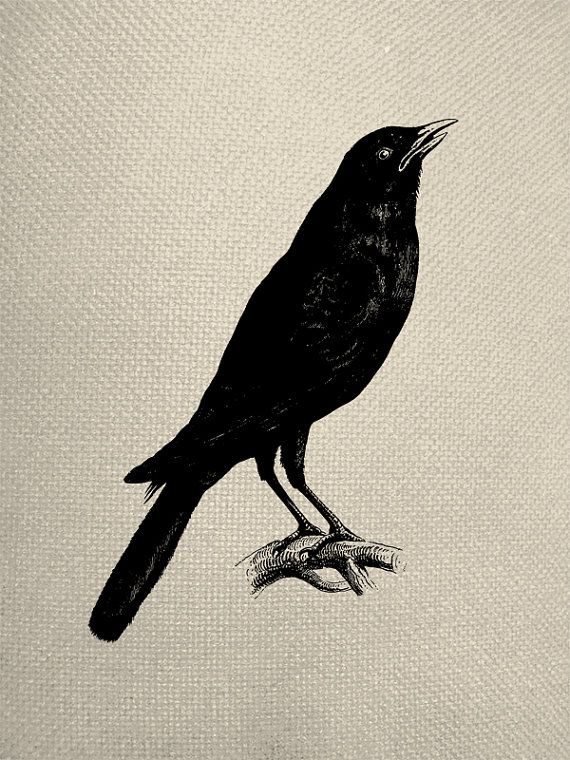Holloween Vintage Silhouette Style Crow by ...