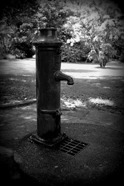 Functional old water pump in the Durban Botanical Gardens