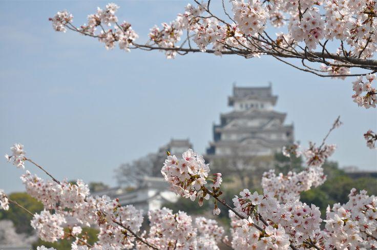 Japan on April