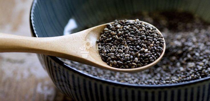 Черника выращивание из семян