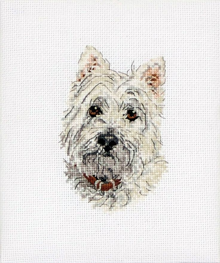 Statement Clutch - Westie sketch by VIDA VIDA hUnqegw8