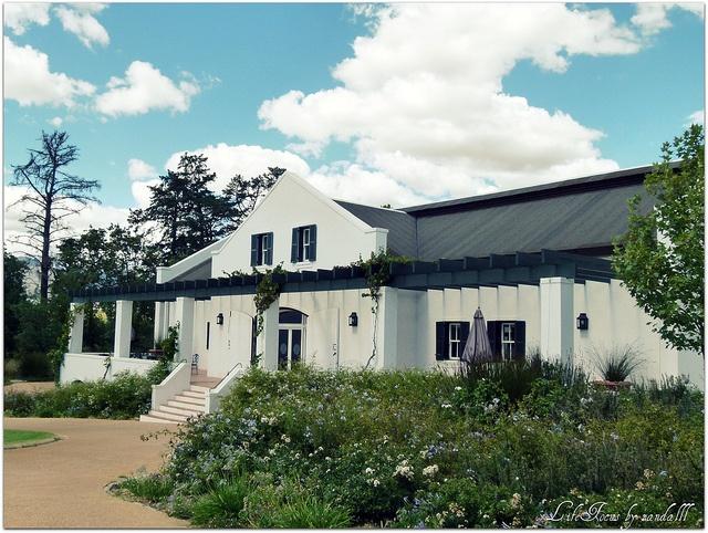 Cape Dutch architcture on wine farm