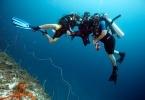 Sansibar - der Indischen Ozean vor der Küste Tansanias ist ein Traum für Taucher