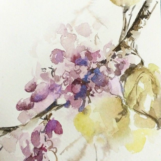 Quick sketch, blossoms. Tested luminescent watercolor on this: the kind of blue is actually pink color with pearl effect. Быстрый скетч цветущей ветки. И заодно тест люминесцентной акварельной краски, она розовая, но на темных участках дает перламутр синеватый такой. #акварель #живопись #скетч #набросок #aquarelle #watercolor #watercolors #watercolour #sketch #sketching #sketchbook #blossom #paint #painting #nature #color_test #artsupplies #topcreator #Art_Spotlight