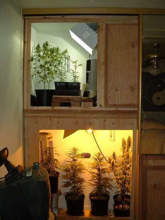 Homemade Grow Box Weed I Really Like This System It Is A