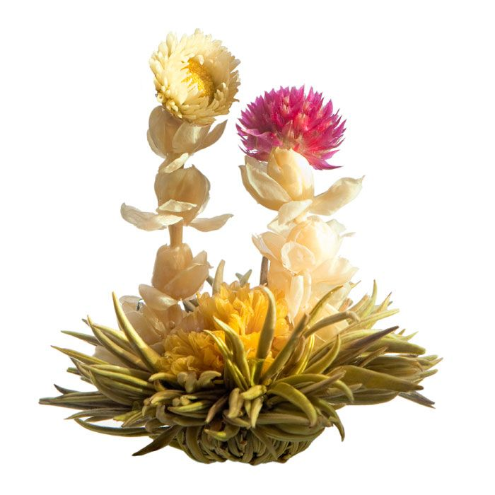 173 best flowering tea collection images on pinterest tea time harmony blooming tea ingredients jasmine chrysanthemum amaranth silver needle white tea scented with fresh jasmine flower mightylinksfo