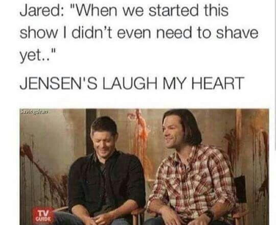Supernatural   Jared and Jensen interview