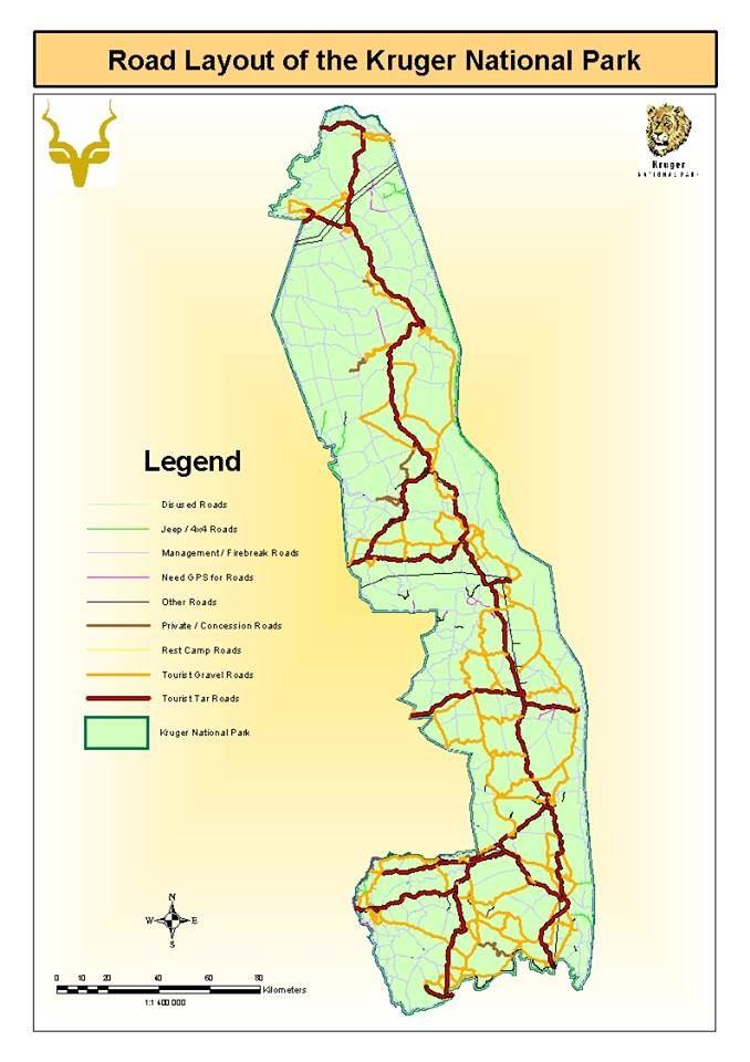 Roads of Kruger.