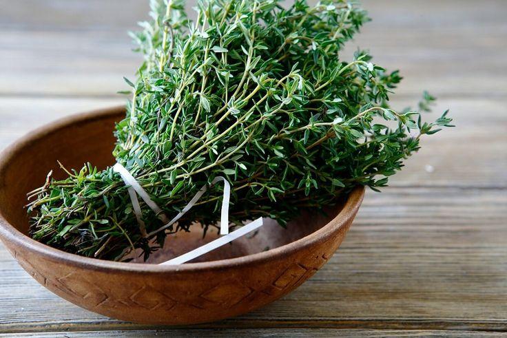 Самая мощная трава, которая уничтожает стрептококк, герпес, кандидоз и грипп!   MyInterest.Club