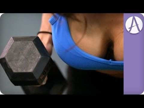The Ultimate UPPER BODY Workout | Autumn Fitness  http://www.youtube.com/attribution_link?a=astNrNTfGZg&u=/watch%3Fv%3DEK18V5IKsQE%26feature%3Dshare