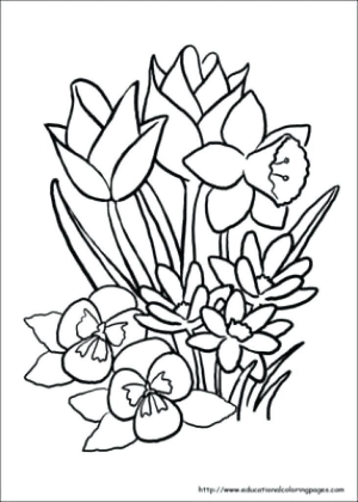 - Coloring Pages For Seniors Coloring Pages For Older Adults At Getdrawings  In 2020 Spring Coloring Sheets, Flower Coloring Sheets, Printable Flower  Coloring Pages