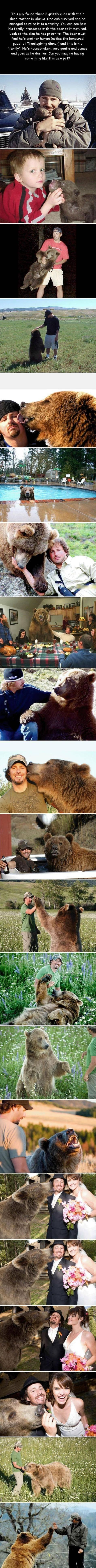 Cute, but I can't help but think the bear is going to eat him one day