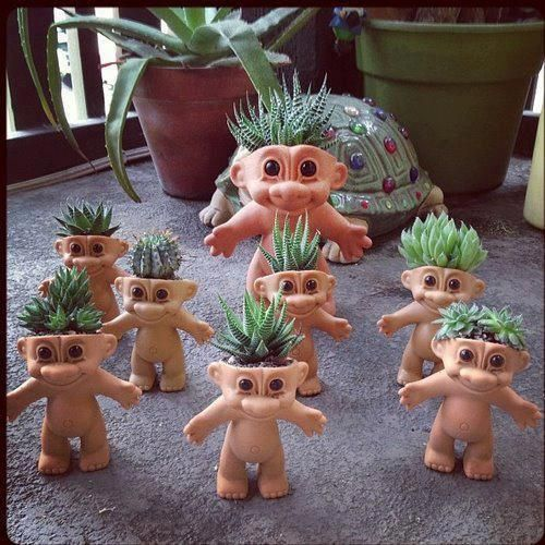 succulent in cute head planter