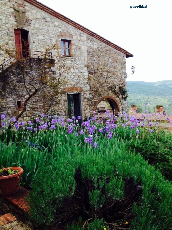 Toscana Fontodi