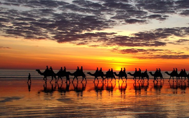 Broome: Kimberley Dreams, Buckets Lists, Broom, Sunsets, Cable Beaches, Dreams Outback, Australia, Lists Travel, Camels