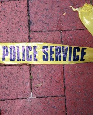 A Camperdown farmer has been shot and killed while his wife and two sons watched in horror.