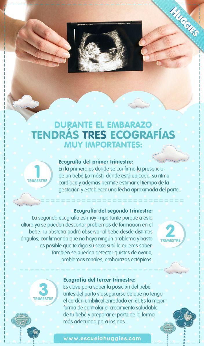 Hoy te compartimos el calendario de ecografías :) http://escuelahuggies.com/Panzalogia/Ecografias-prenatales.aspx