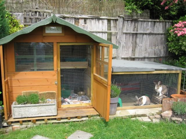 Wendy houses look cute in the garden and provide shelter and dry space for the bunnies.  This run on the side is smaller than I would like but, you get the picture!