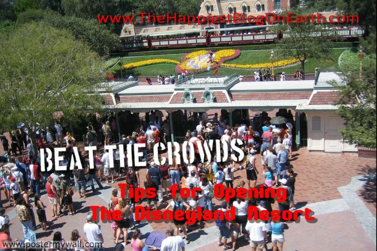 "We get a lot of questions at The Happiest Blog on Earth about Disneyland crowds and readers who want to know, ""When is the best time to go to Disneyland?"" Or questions from readers who are planning to go to Disneyland during peak times and just want to know how to navigate the parks. If … Continue reading Disneyland Crowds"