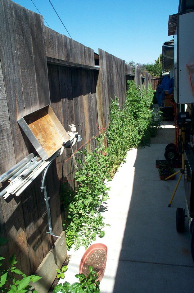 Gardening Ideas | How To Make Garden In A Small Area by Pioneer Settler at http://pioneersettler.com/a-real-life-secret-garden-news/