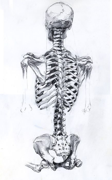 never forget that you are an osteopath.