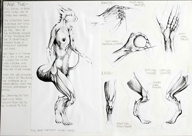 This collection of beautiful sketches by a Level 3 NCEA Art student is an excellent example of what a sketchbook page should look like  thorough investigation of form